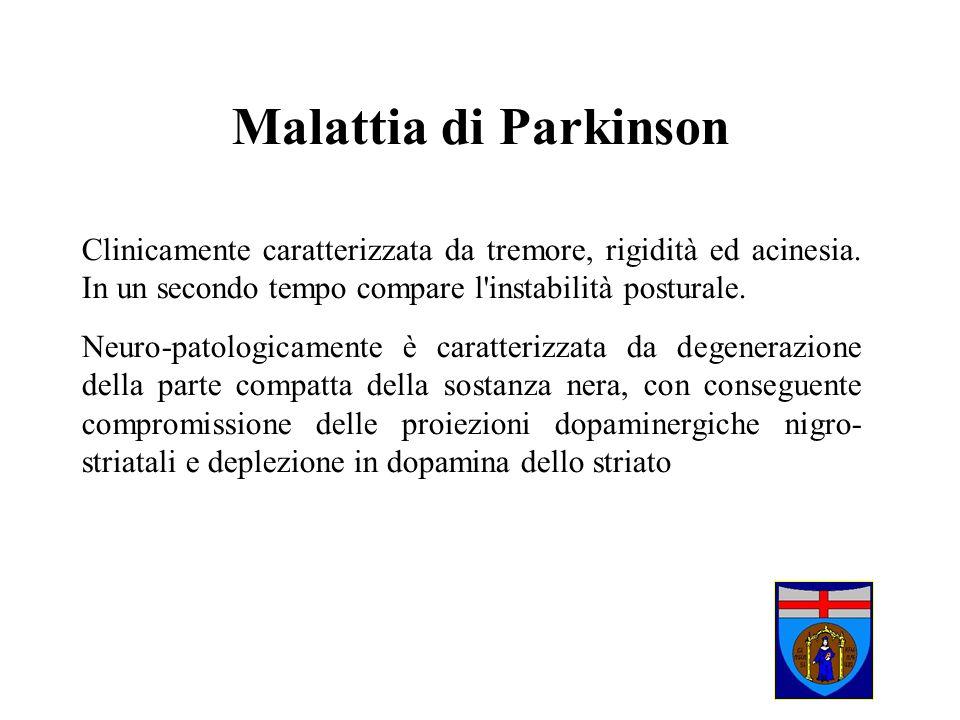 Malattia di Parkinson Clinicamente caratterizzata da tremore, rigidità ed acinesia. In un secondo tempo compare l'instabilità posturale. Neuro-patolog