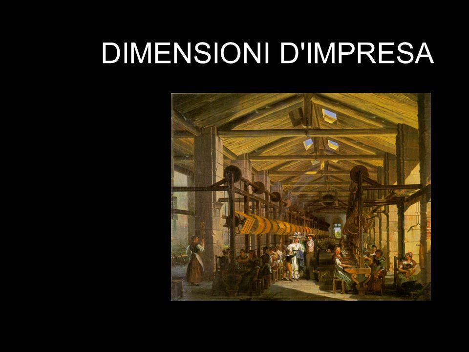 DIMENSIONI D IMPRESA
