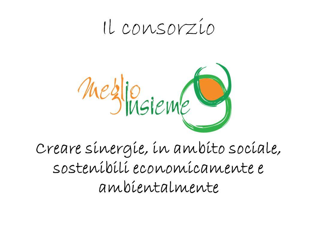 Il consorzio Creare sinergie, in ambito sociale, sostenibili economicamente e ambientalmente