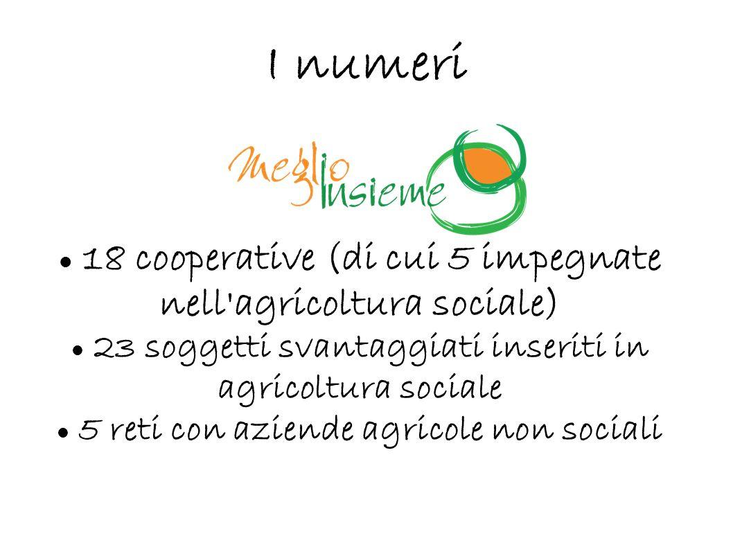 I numeri 18 cooperative (di cui 5 impegnate nell'agricoltura sociale) 23 soggetti svantaggiati inseriti in agricoltura sociale 5 reti con aziende agri