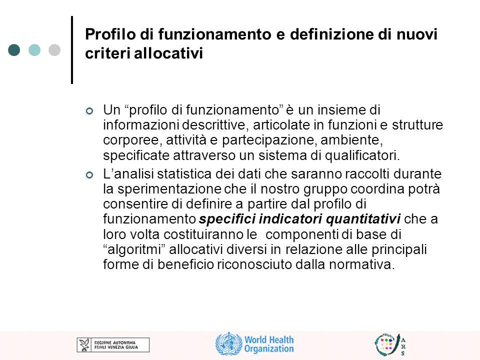 Profilo di funzionamento e definizione di nuovi criteri allocativi Un profilo di funzionamento è un insieme di informazioni descrittive, articolate in