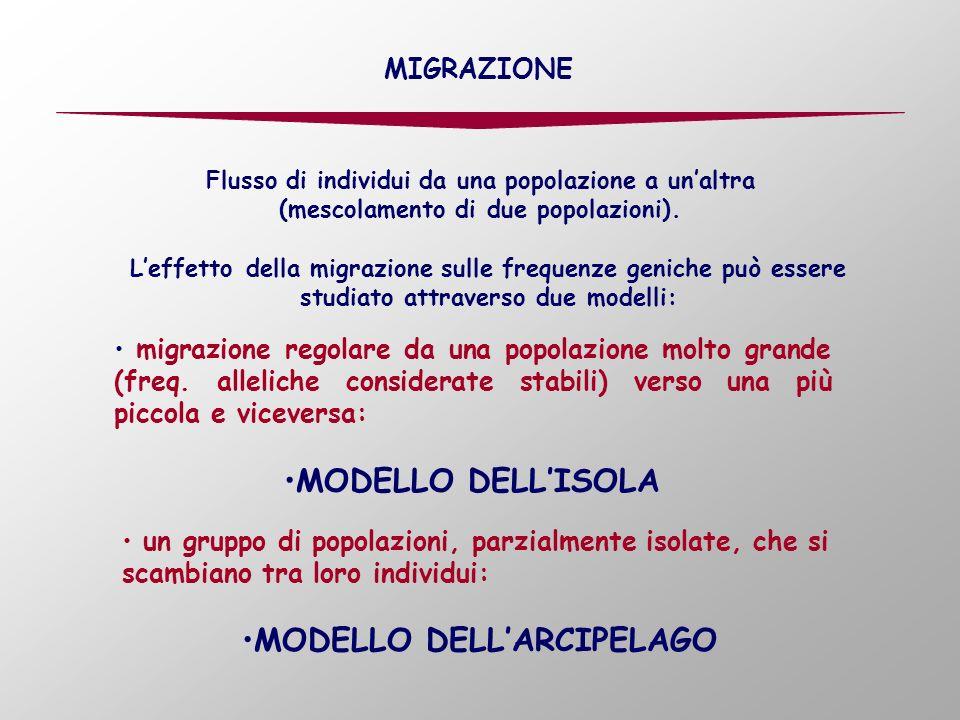 Flusso di individui da una popolazione a unaltra (mescolamento di due popolazioni). Leffetto della migrazione sulle frequenze geniche può essere studi