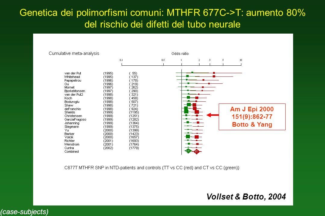 Genetica dei polimorfismi comuni: MTHFR 677C->T: aumento 80% del rischio dei difetti del tubo neurale Am J Epi 2000 151(9):862-77 Botto & Yang Vollset