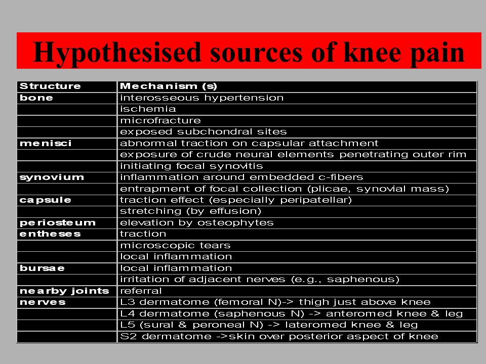 Hypothesised sources of knee pain