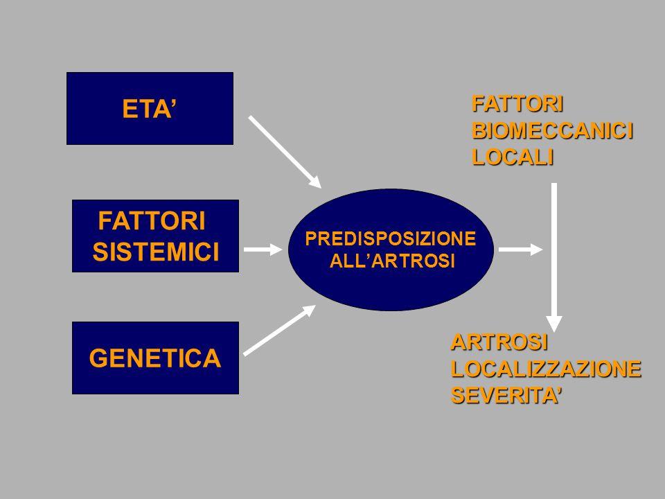 ETA FATTORI SISTEMICI GENETICA PREDISPOSIZIONE ALLARTROSI FATTORIBIOMECCANICILOCALI ARTROSILOCALIZZAZIONESEVERITA