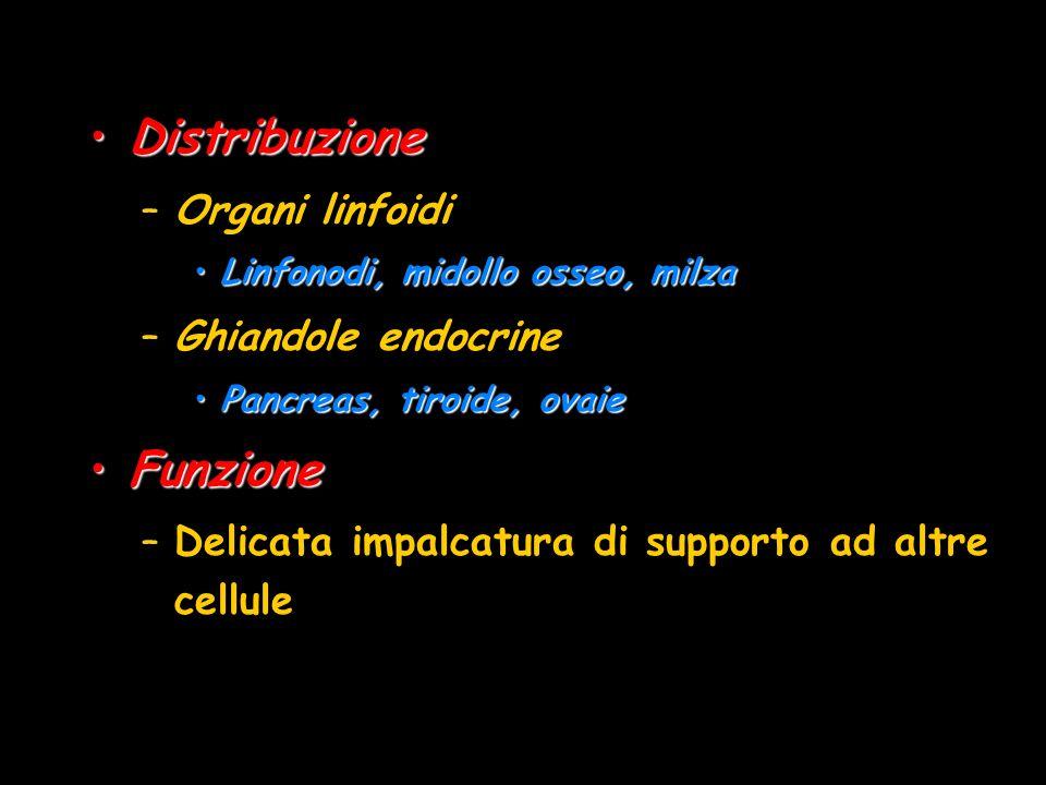 DistribuzioneDistribuzione –Organi linfoidi Linfonodi, midollo osseo, milzaLinfonodi, midollo osseo, milza –Ghiandole endocrine Pancreas, tiroide, ova
