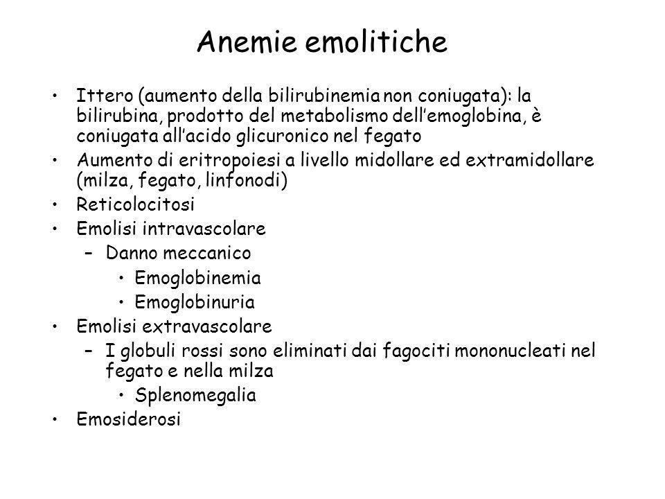 Anemie emolitiche Ittero (aumento della bilirubinemia non coniugata): la bilirubina, prodotto del metabolismo dellemoglobina, è coniugata allacido gli