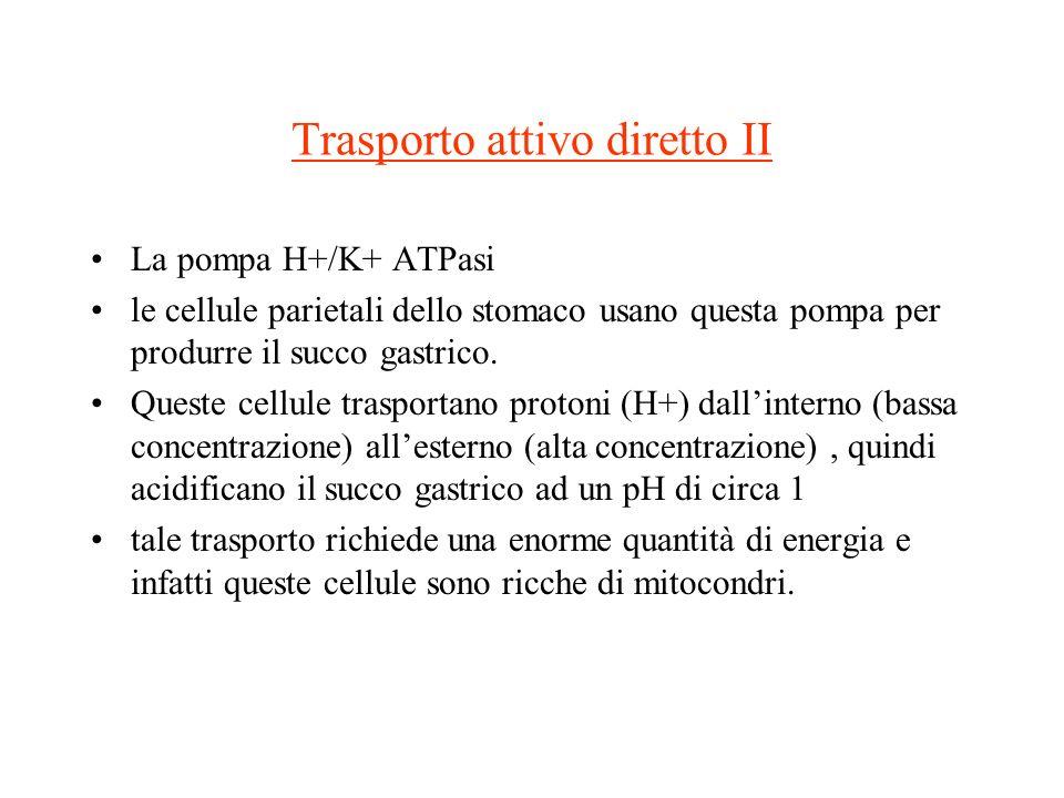 Trasporto attivo diretto II La pompa H+/K+ ATPasi le cellule parietali dello stomaco usano questa pompa per produrre il succo gastrico. Queste cellule