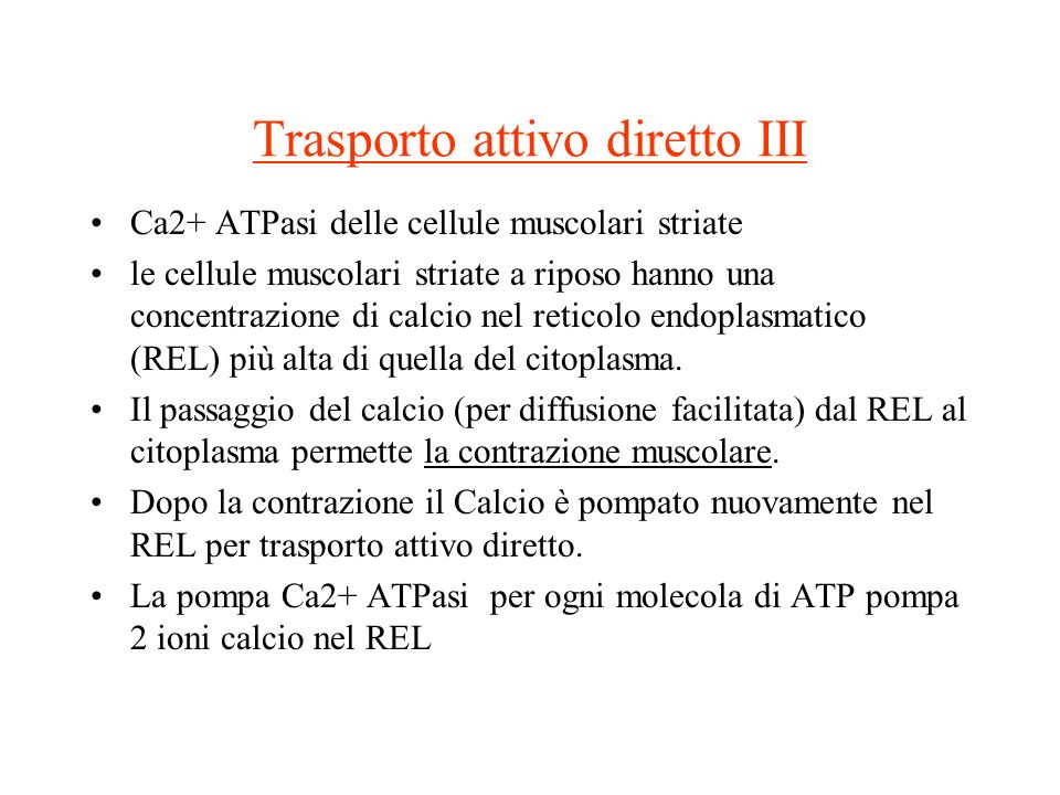 Trasporto attivo diretto III Ca2+ ATPasi delle cellule muscolari striate le cellule muscolari striate a riposo hanno una concentrazione di calcio nel