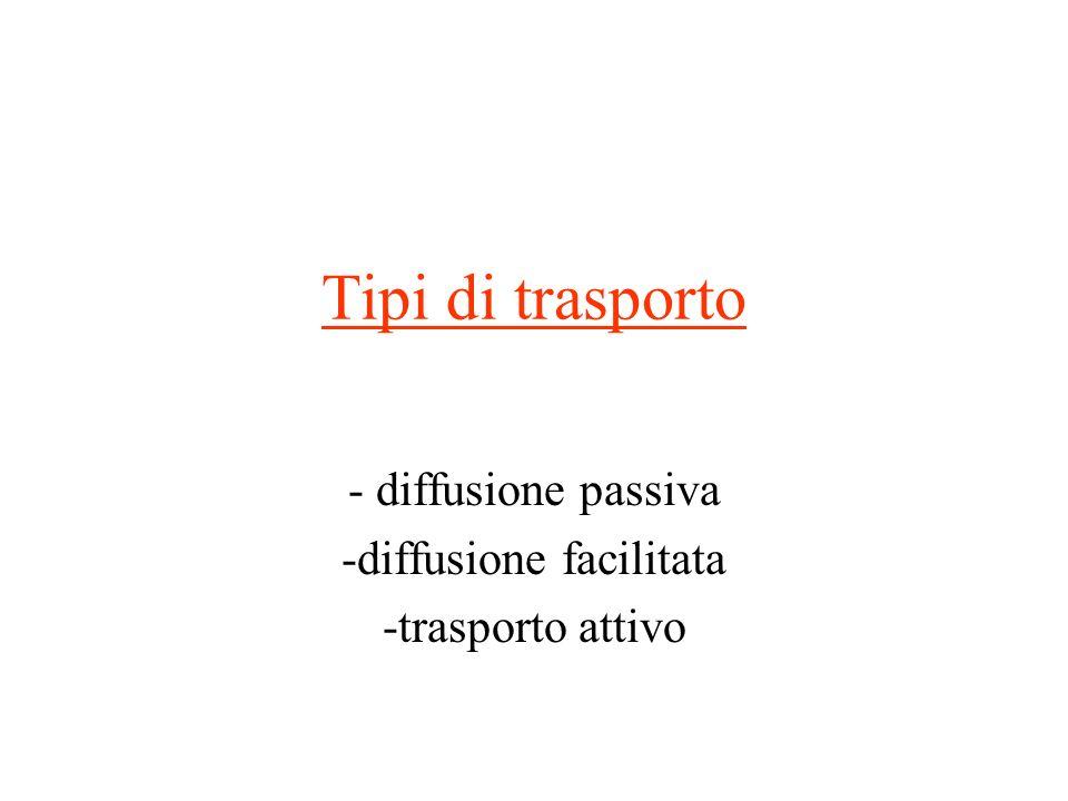 Tipi di trasporto - diffusione passiva -diffusione facilitata -trasporto attivo
