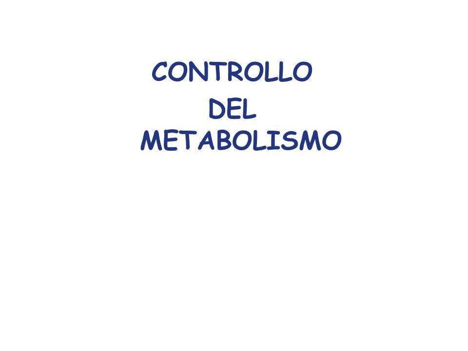 CONTROLLO DEL METABOLISMO