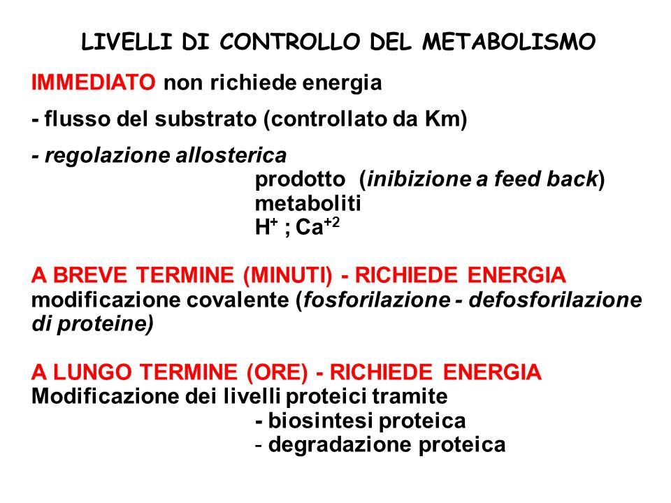 LIVELLI DI CONTROLLO DEL METABOLISMO IMMEDIATO non richiede energia - flusso del substrato (controllato da Km) - regolazione allosterica prodotto (inibizione a feed back) metaboliti H + ; Ca +2 A BREVE TERMINE (MINUTI) - RICHIEDE ENERGIA modificazione covalente (fosforilazione - defosforilazione di proteine) A LUNGO TERMINE (ORE) - RICHIEDE ENERGIA Modificazione dei livelli proteici tramite - biosintesi proteica - degradazione proteica
