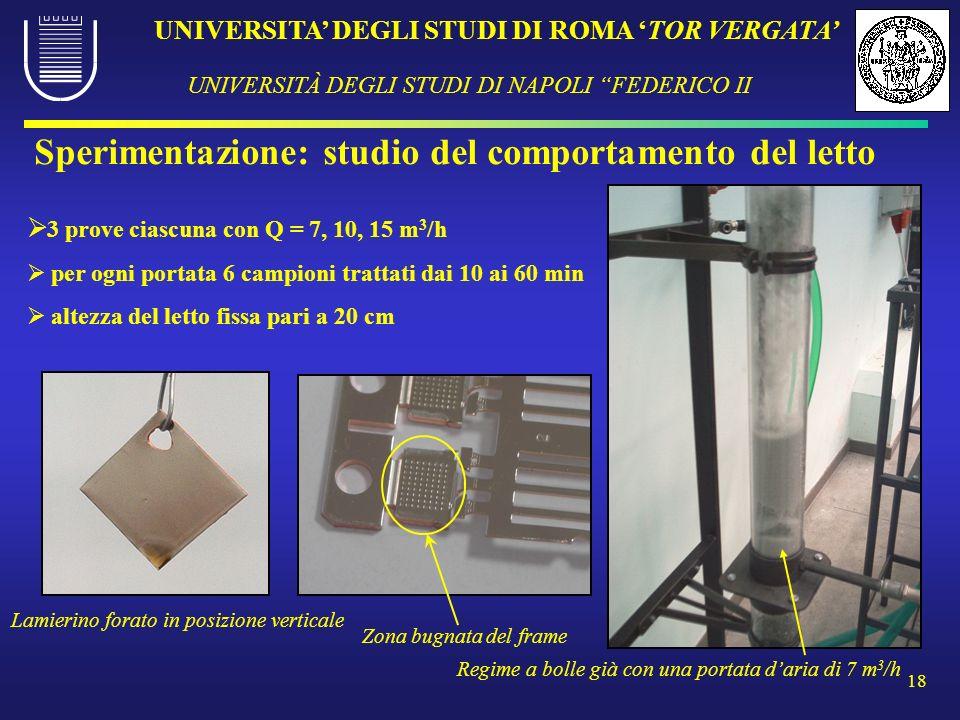 UNIVERSITA DEGLI STUDI DI ROMA TOR VERGATA UNIVERSITÀ DEGLI STUDI DI NAPOLI FEDERICO II 18 3 prove ciascuna con Q = 7, 10, 15 m 3 /h per ogni portata