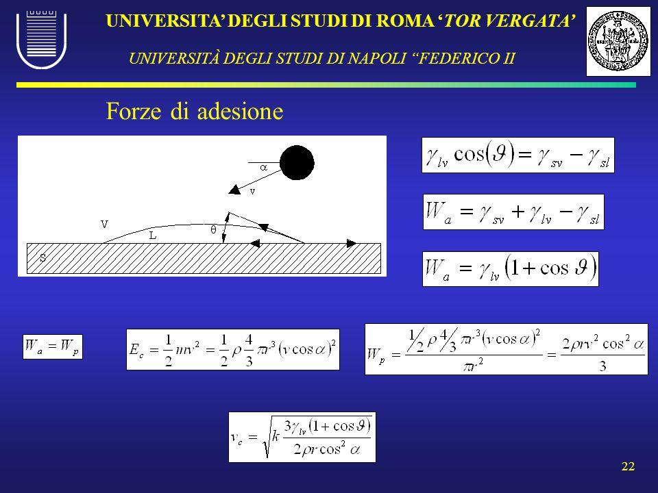 UNIVERSITA DEGLI STUDI DI ROMA TOR VERGATA UNIVERSITÀ DEGLI STUDI DI NAPOLI FEDERICO II 22 Forze di adesione