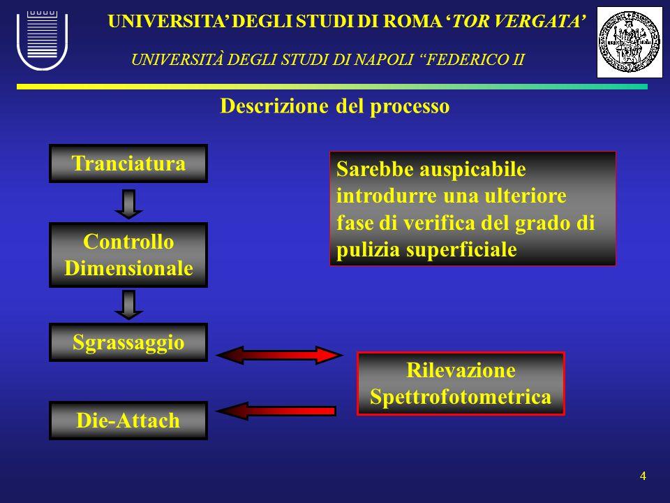 UNIVERSITA DEGLI STUDI DI ROMA TOR VERGATA UNIVERSITÀ DEGLI STUDI DI NAPOLI FEDERICO II 4 Descrizione del processo Rilevazione Spettrofotometrica Tran