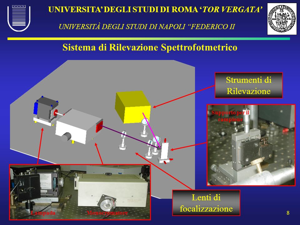 UNIVERSITA DEGLI STUDI DI ROMA TOR VERGATA UNIVERSITÀ DEGLI STUDI DI NAPOLI FEDERICO II 8 Sistema di Rilevazione Spettrofotmetrico Lampada Monocromato