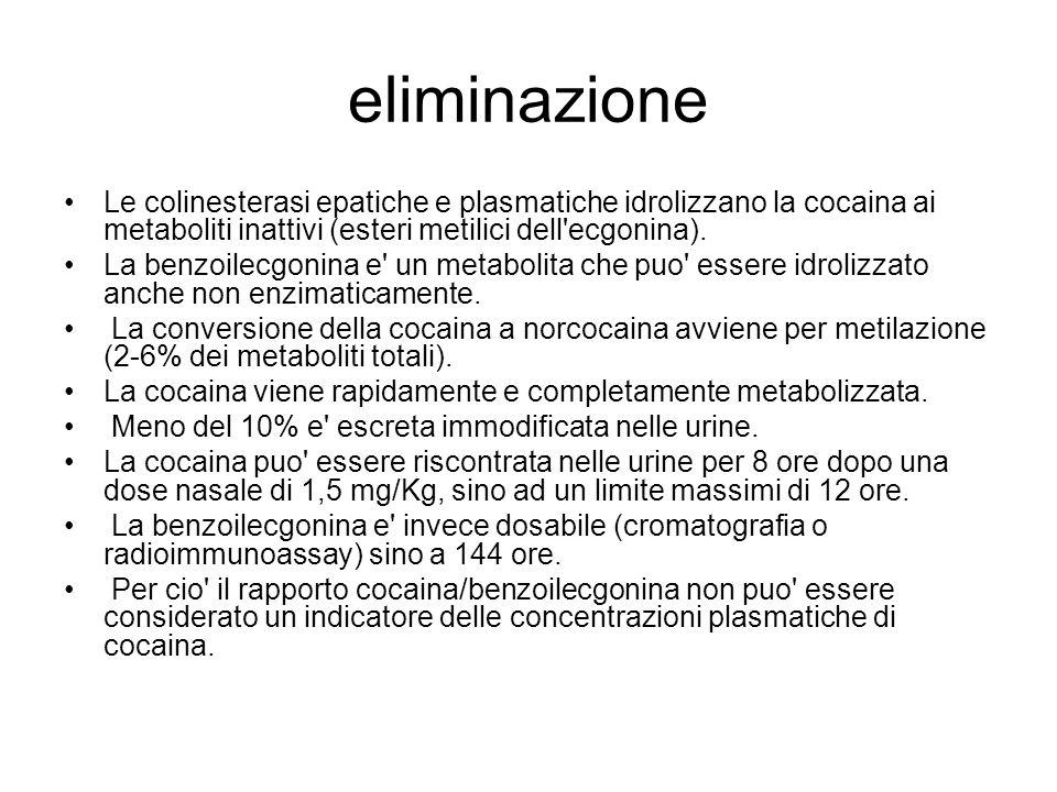 eliminazione Le colinesterasi epatiche e plasmatiche idrolizzano la cocaina ai metaboliti inattivi (esteri metilici dell'ecgonina). La benzoilecgonina
