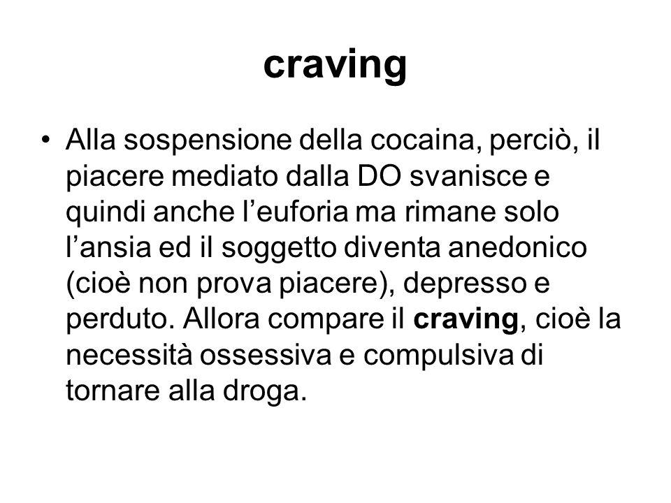 craving Alla sospensione della cocaina, perciò, il piacere mediato dalla DO svanisce e quindi anche leuforia ma rimane solo lansia ed il soggetto dive