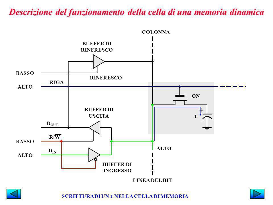 Descrizione del funzionamento della cella di una memoria dinamica RIGA BASSO BUFFER DI RINFRESCO RINFRESCO BUFFER DI INGRESSO BUFFER DI USCITA D OUT R