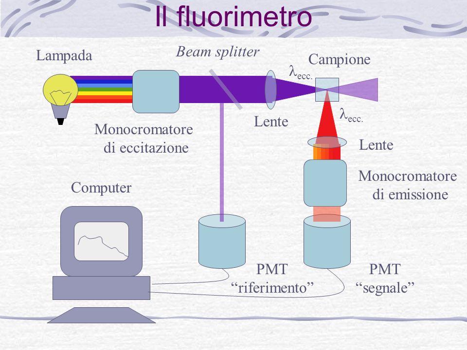 Il fluorimetro Lampada Monocromatore di eccitazione Beam splitter Lente Monocromatore di emissione ecc. Campione PMT segnale PMT riferimento Computer