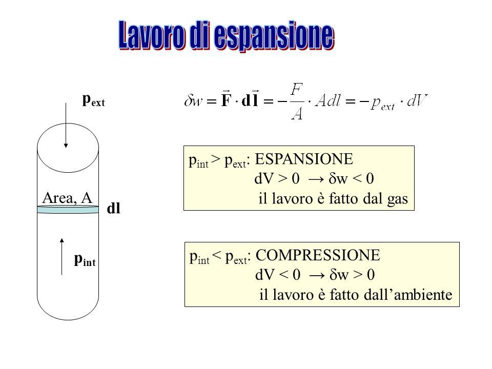 dl p ext p int Area, A p int > p ext : ESPANSIONE dV > 0 w < 0 il lavoro è fatto dal gas p int < p ext : COMPRESSIONE dV 0 il lavoro è fatto dallambie