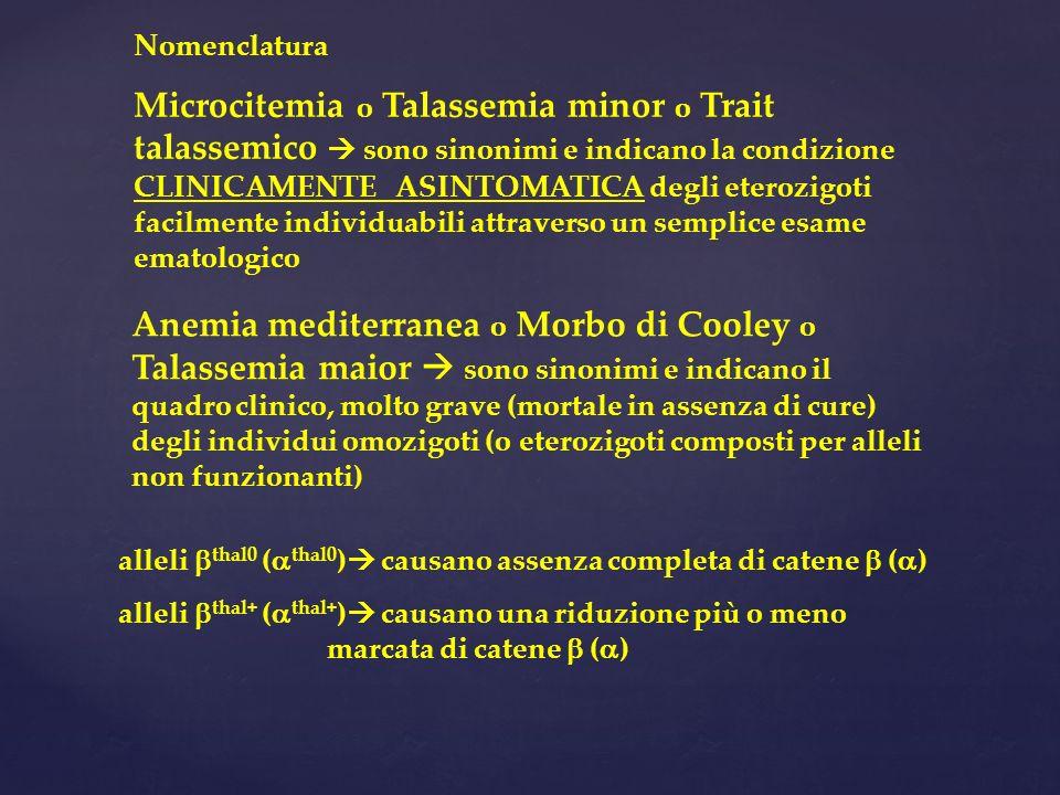 Nomenclatura Microcitemia o Talassemia minor o Trait talassemico sono sinonimi e indicano la condizione CLINICAMENTE ASINTOMATICA degli eterozigoti facilmente individuabili attraverso un semplice esame ematologico Anemia mediterranea o Morbo di Cooley o Talassemia maior sono sinonimi e indicano il quadro clinico, molto grave (mortale in assenza di cure) degli individui omozigoti (o eterozigoti composti per alleli non funzionanti) alleli thal0 ( thal0 ) causano assenza completa di catene ( ) alleli thal+ ( thal+ ) causano una riduzione più o meno marcata di catene ( )
