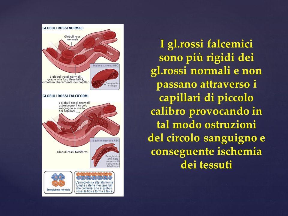 I gl.rossi falcemici sono più rigidi dei gl.rossi normali e non passano attraverso i capillari di piccolo calibro provocando in tal modo ostruzioni del circolo sanguigno e conseguente ischemia dei tessuti