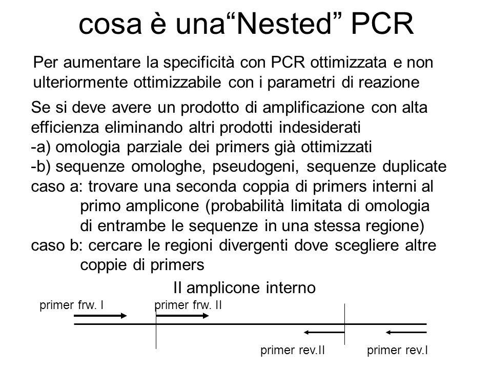 cosa è unaNested PCR Per aumentare la specificità con PCR ottimizzata e non ulteriormente ottimizzabile con i parametri di reazione Se si deve avere u