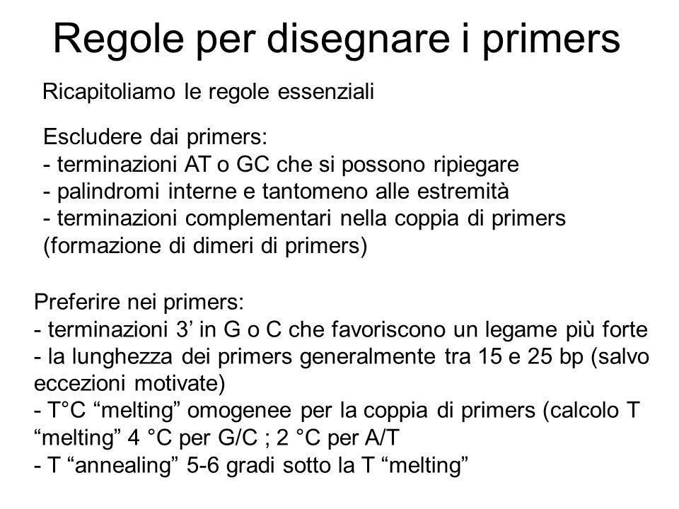 Regole per disegnare i primers Ricapitoliamo le regole essenziali Escludere dai primers: - terminazioni AT o GC che si possono ripiegare - palindromi