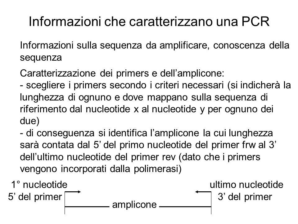 Informazioni che caratterizzano una PCR Informazioni sulla sequenza da amplificare, conoscenza della sequenza Caratterizzazione dei primers e dellampl