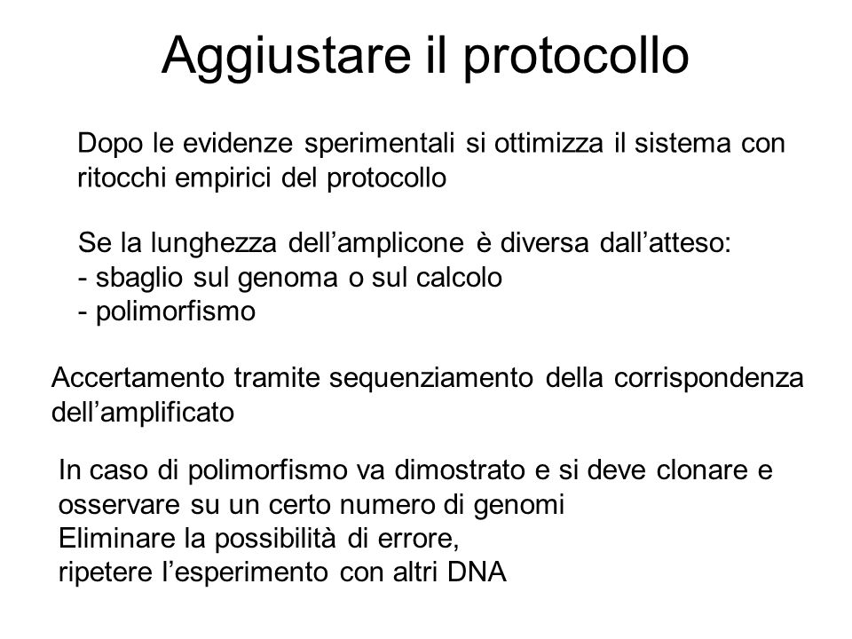 Aggiustare il protocollo Dopo le evidenze sperimentali si ottimizza il sistema con ritocchi empirici del protocollo Se la lunghezza dellamplicone è di