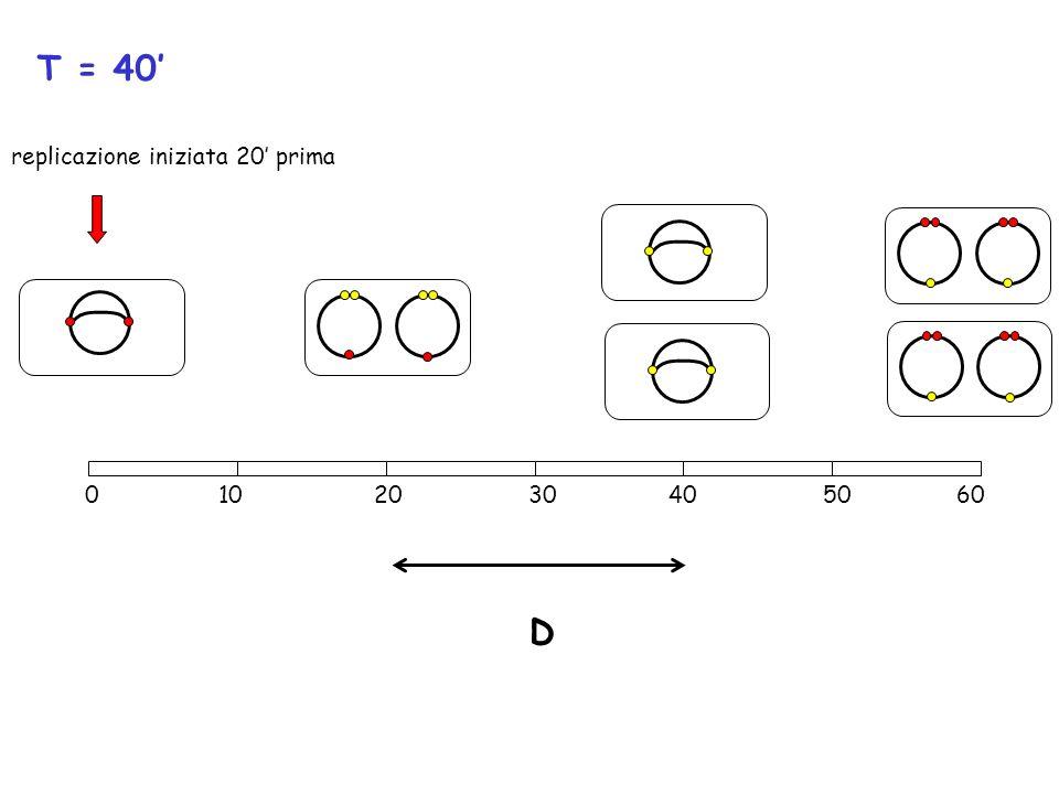 D T = 40 0 10 20 30 40 50 60 replicazione iniziata 20 prima