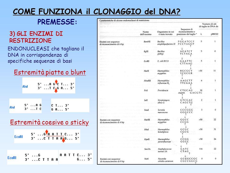 PREMESSE: 3) GLI ENZIMI DI RESTRIZIONE Estremità piatte o blunt Estremità coesive o sticky ENDONUCLEASI che tagliano il DNA in corrispondenza di speci