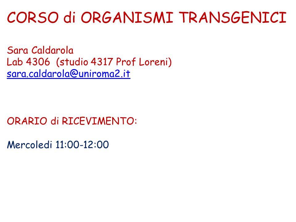 CORSO di ORGANISMI TRANSGENICI Sara Caldarola Lab 4306 (studio 4317 Prof Loreni) sara.caldarola@uniroma2.it ORARIO di RICEVIMENTO: Mercoledi 11:00-12:00