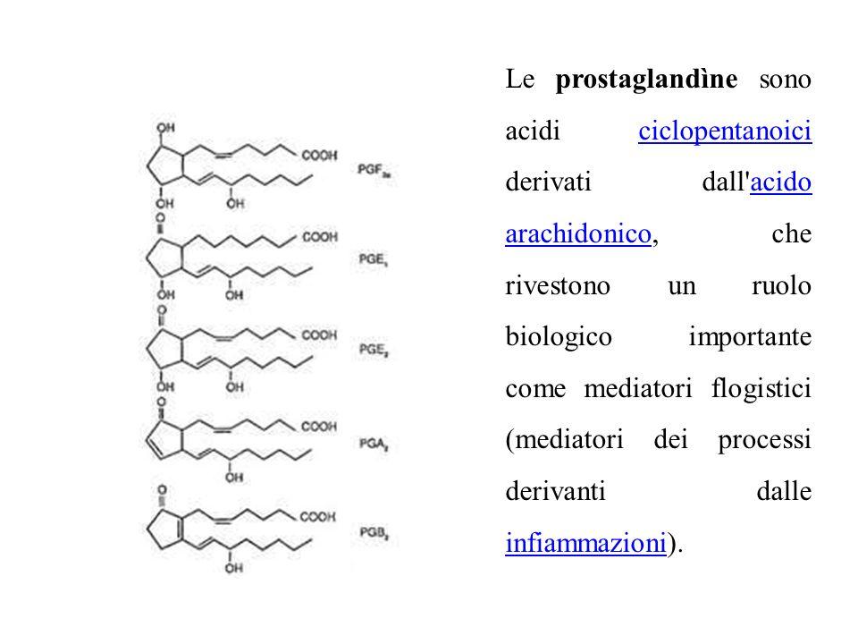 Le prostaglandìne sono acidi ciclopentanoici derivati dall'acido arachidonico, che rivestono un ruolo biologico importante come mediatori flogistici (