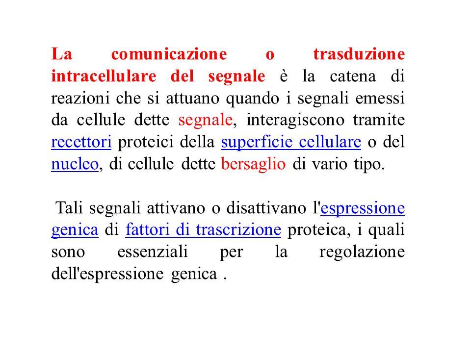 La comunicazione o trasduzione intracellulare del segnale è la catena di reazioni che si attuano quando i segnali emessi da cellule dette segnale, int