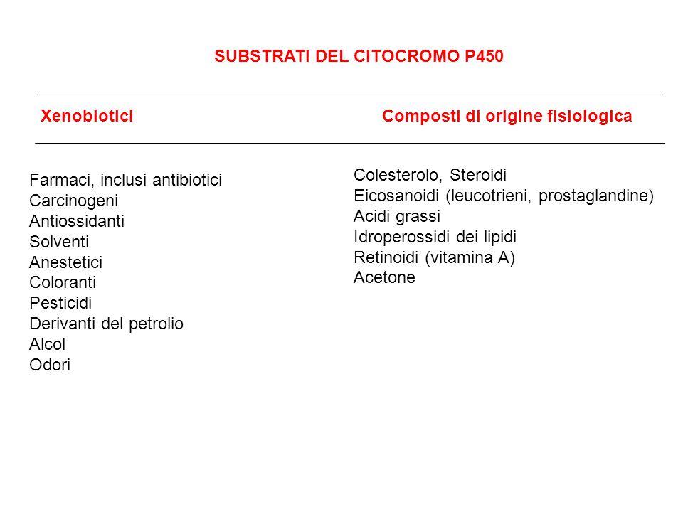SUBSTRATI DEL CITOCROMO P450 XenobioticiComposti di origine fisiologica Farmaci, inclusi antibiotici Carcinogeni Antiossidanti Solventi Anestetici Col
