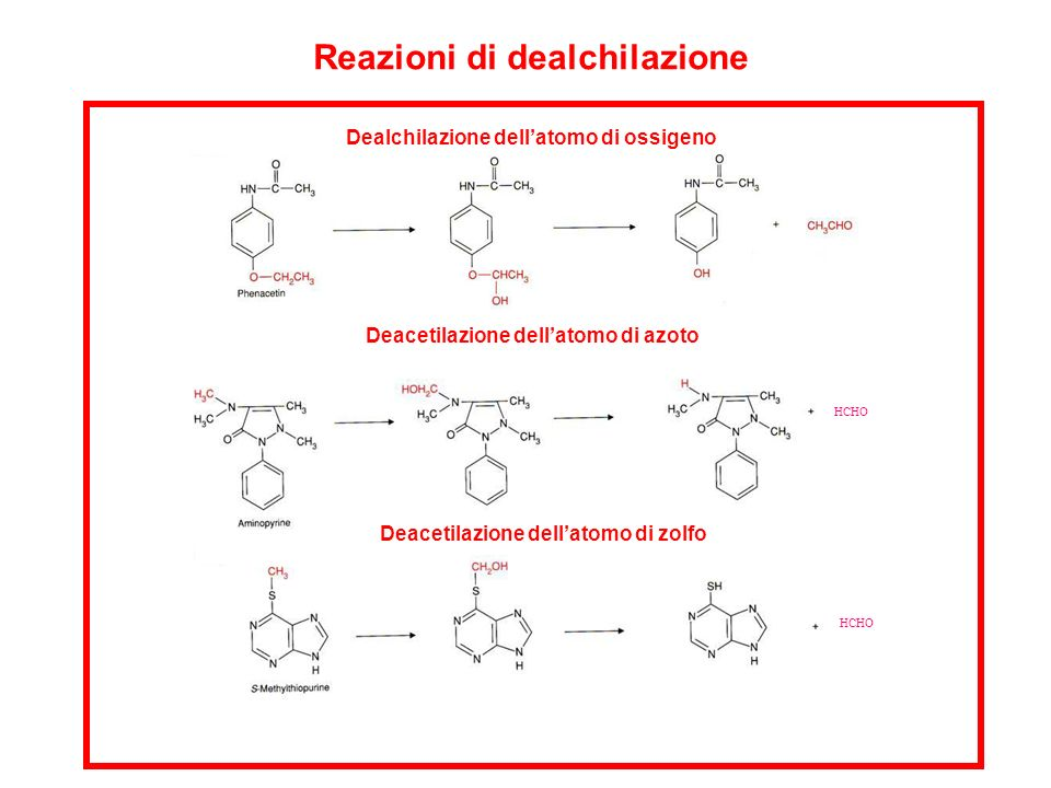 HCHO Reazioni di dealchilazione Deacetilazione dellatomo di azoto Dealchilazione dellatomo di ossigeno Deacetilazione dellatomo di zolfo