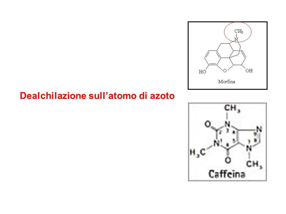 Dealchilazione sullatomo di azoto