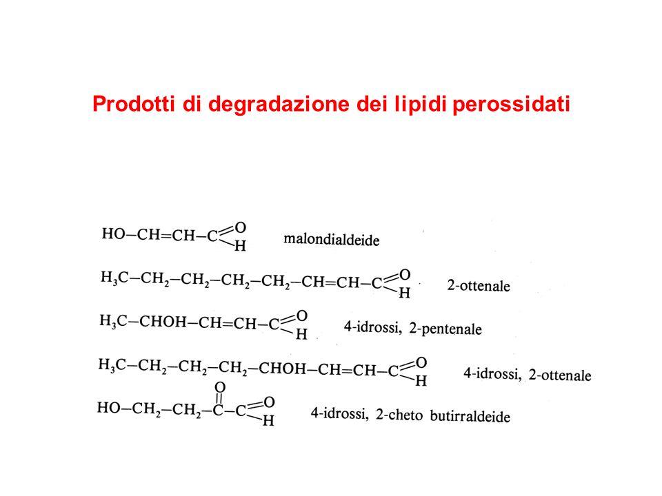 Prodotti di degradazione dei lipidi perossidati