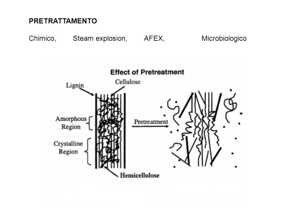 PRETRATTAMENTO Chimico, Steam explosion, AFEX, Microbiologico