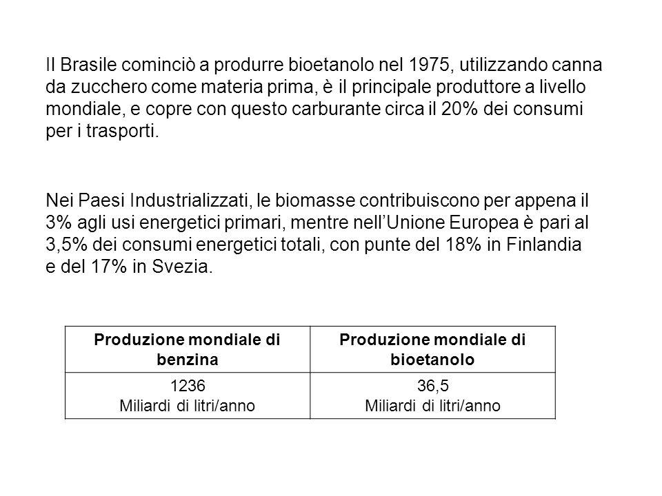 Il Brasile cominciò a produrre bioetanolo nel 1975, utilizzando canna da zucchero come materia prima, è il principale produttore a livello mondiale, e