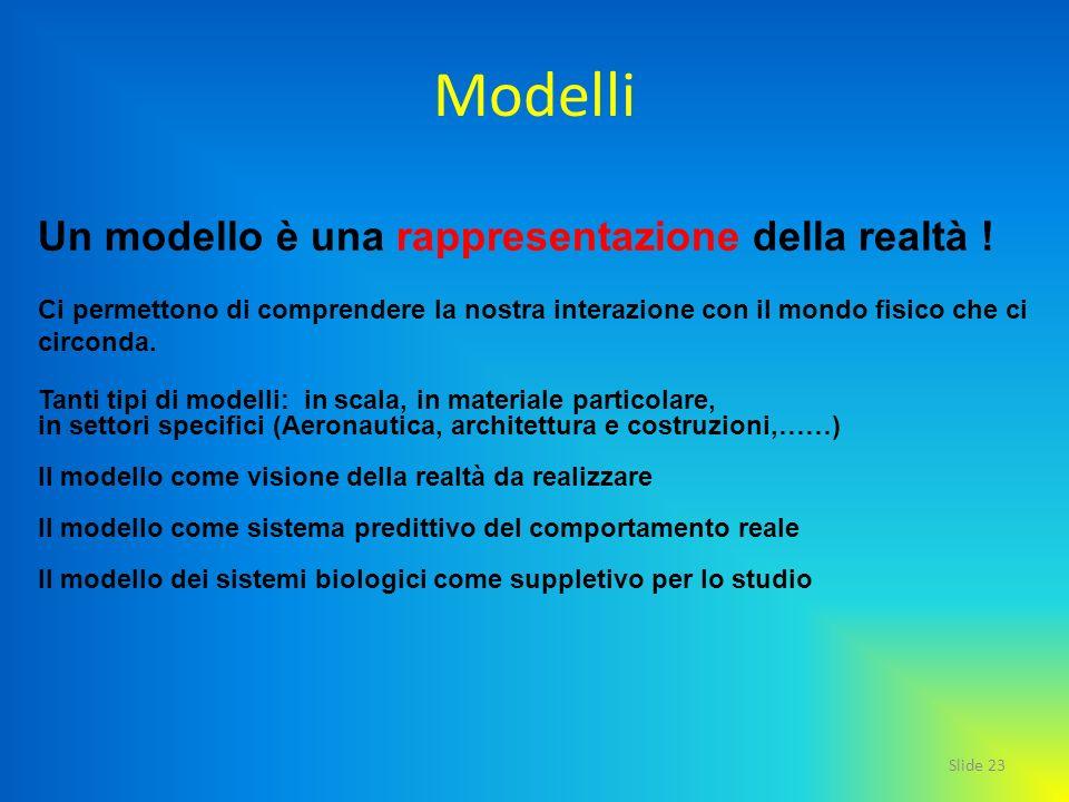 Slide 23 Modelli Un modello è una rappresentazione della realtà ! Ci permettono di comprendere la nostra interazione con il mondo fisico che ci circon