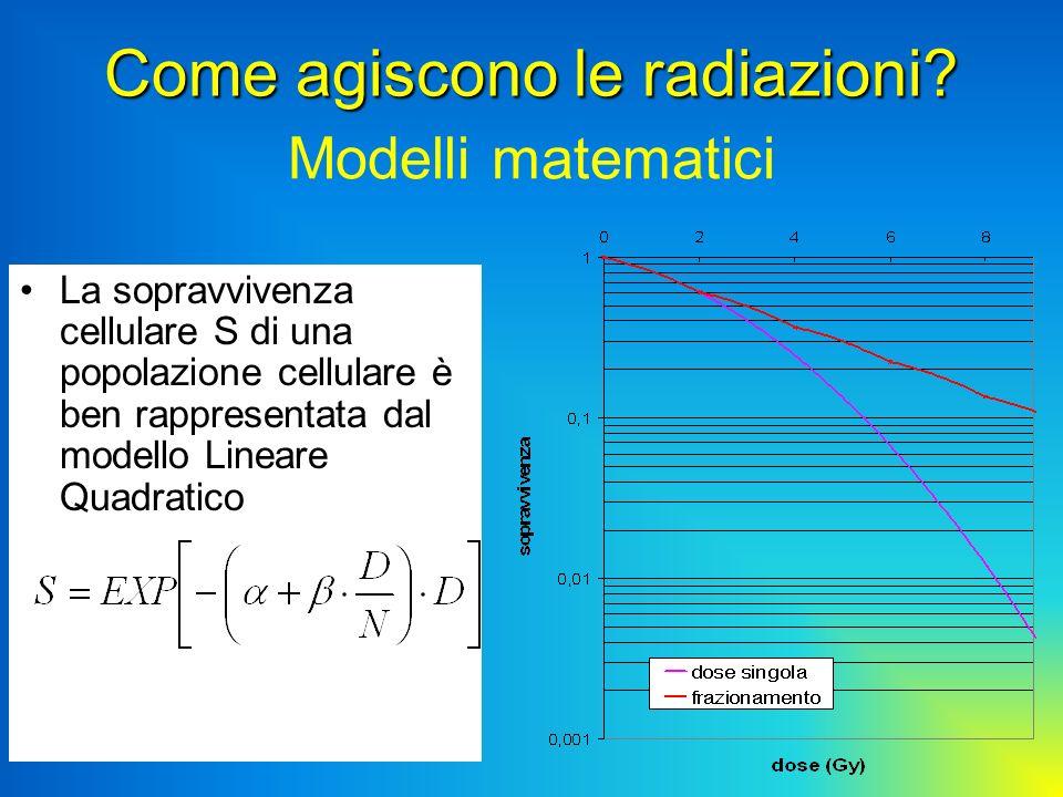 Modelli matematici La sopravvivenza cellulare S di una popolazione cellulare è ben rappresentata dal modello Lineare Quadratico Come agiscono le radia