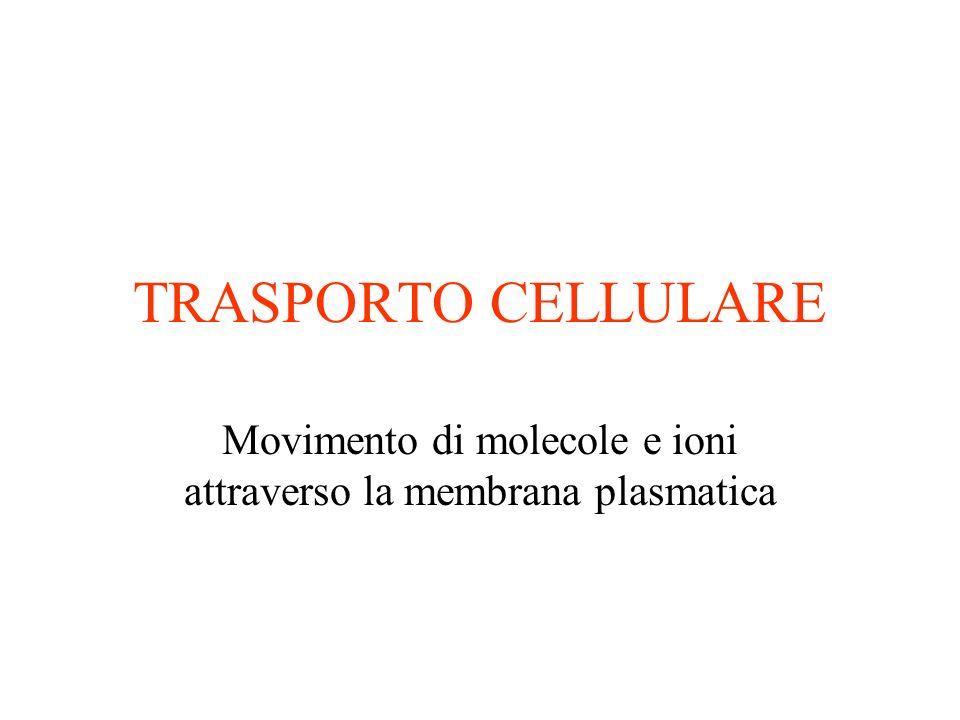 TRASPORTO CELLULARE Movimento di molecole e ioni attraverso la membrana plasmatica