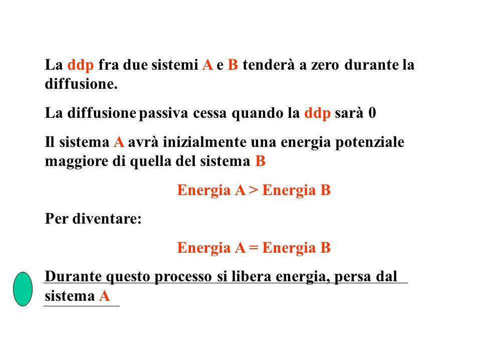 La ddp fra due sistemi A e B tenderà a zero durante la diffusione. La diffusione passiva cessa quando la ddp sarà 0 Il sistema A avrà inizialmente una