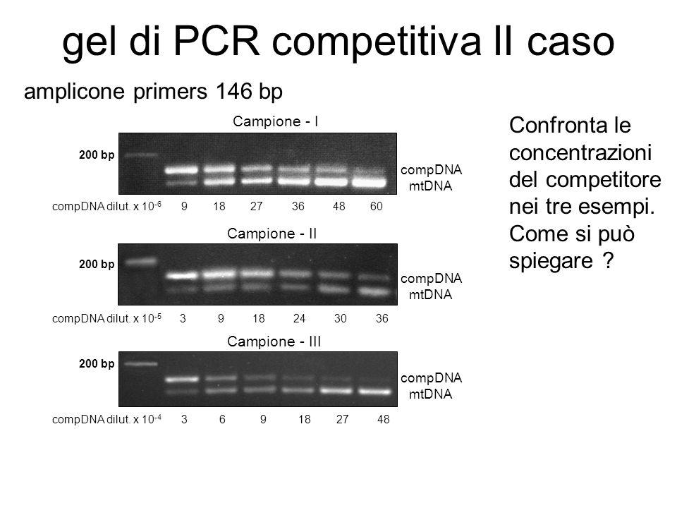 gel di PCR competitiva II caso Campione - III Campione - I Campione - II 200 bp 3 6 9 18 27 48 3 9 18 24 30 36 9 18 27 36 48 60 compDNA mtDNA compDNA