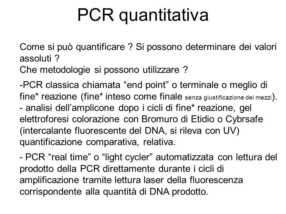 PCR quantitativa Come si può quantificare ? Si possono determinare dei valori assoluti ? Che metodologie si possono utilizzare ? -PCR classica chiamat