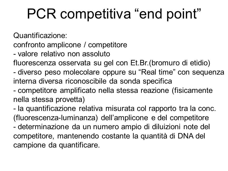 PCR competitiva end point Quantificazione: confronto amplicone / competitore - valore relativo non assoluto fluorescenza osservata su gel con Et.Br.(b