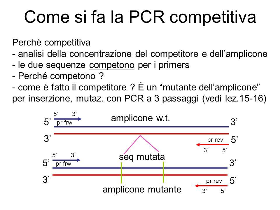 Come si fa la PCR competitiva Perchè competitiva - analisi della concentrazione del competitore e dellamplicone - le due sequenze competono per i prim